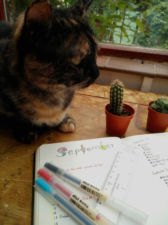 5 Things I do When Attempting to be Productive -- productivity tips for your bullet journal https://sonorahillsauthor.com