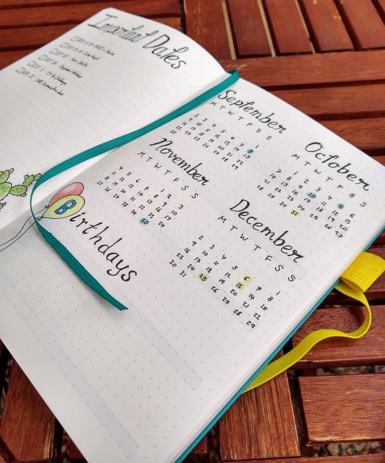 New Bullet Journal - Year in a Glance page in Scribbles That Matter notebook https://sonorahillsauthor.com/